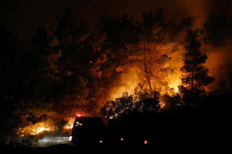 orman yangını aa