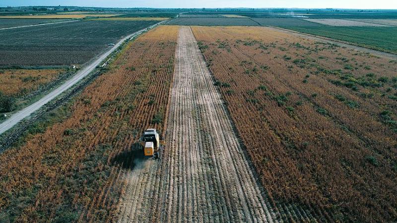Tarım Çiftçi AA.jpg