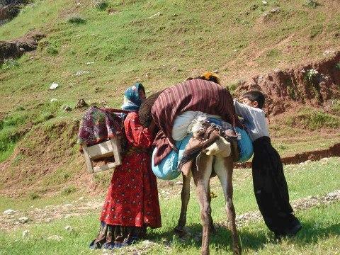 Şeyhbızıni ailesi göçe hazırlanıyor-Kürdistan bölgesi.png