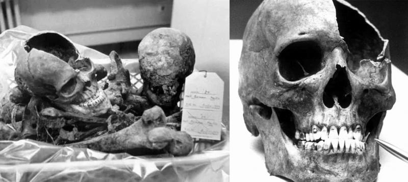 martin bormann'ın kafatası.jpg