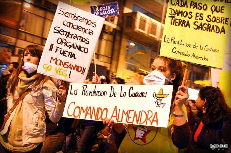 Monsanto protesto.jpg
