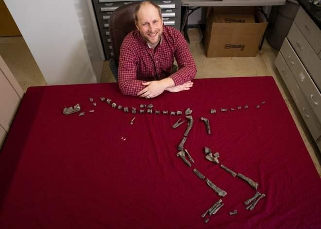 suskityrannus-sterling-fossil.jpg