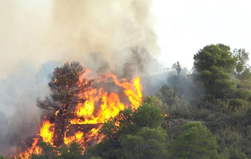 wildfire afp.jpg