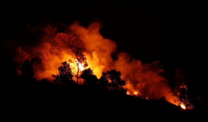 wildfire reuters.jpg