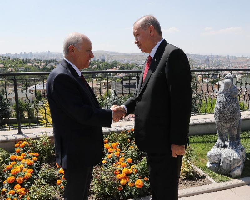 Erdoğan bahçeli