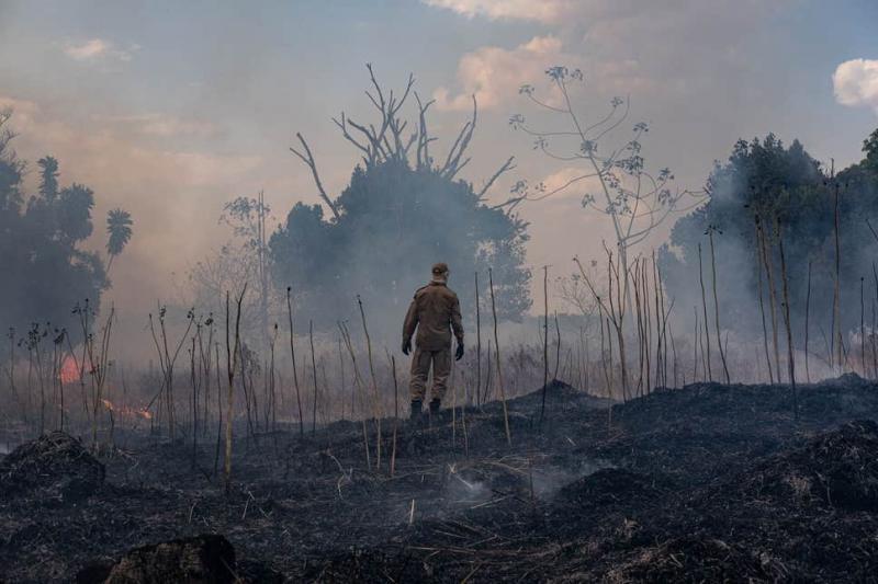 Amazon yangınları - AFP.jpg