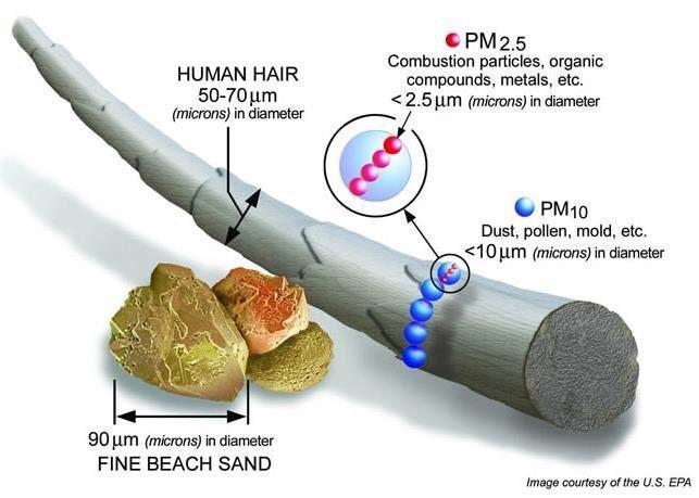 PM2,5 Boyutu.jpg