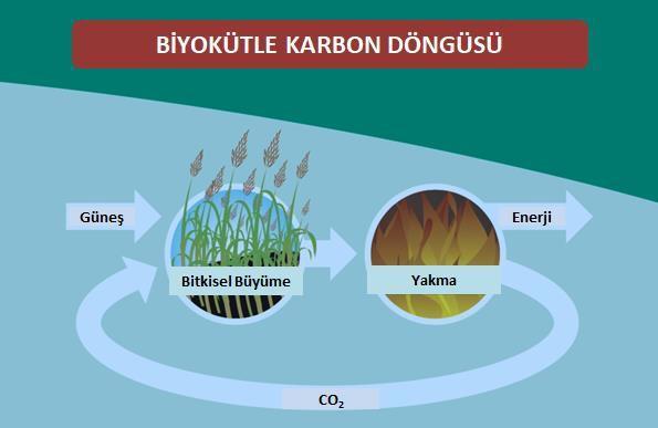 Şekil 7 Biokütle ve Sıfır Karbon Salımı.jpg