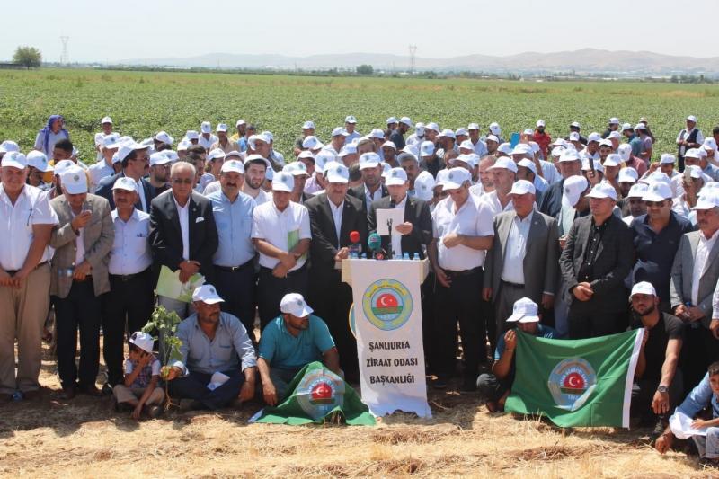 Diyarbakır çiftçi-.jpeg
