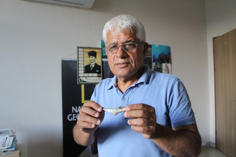 Fotoğraf: İHA / Prof. Dr. Mehmet Gökoğlu