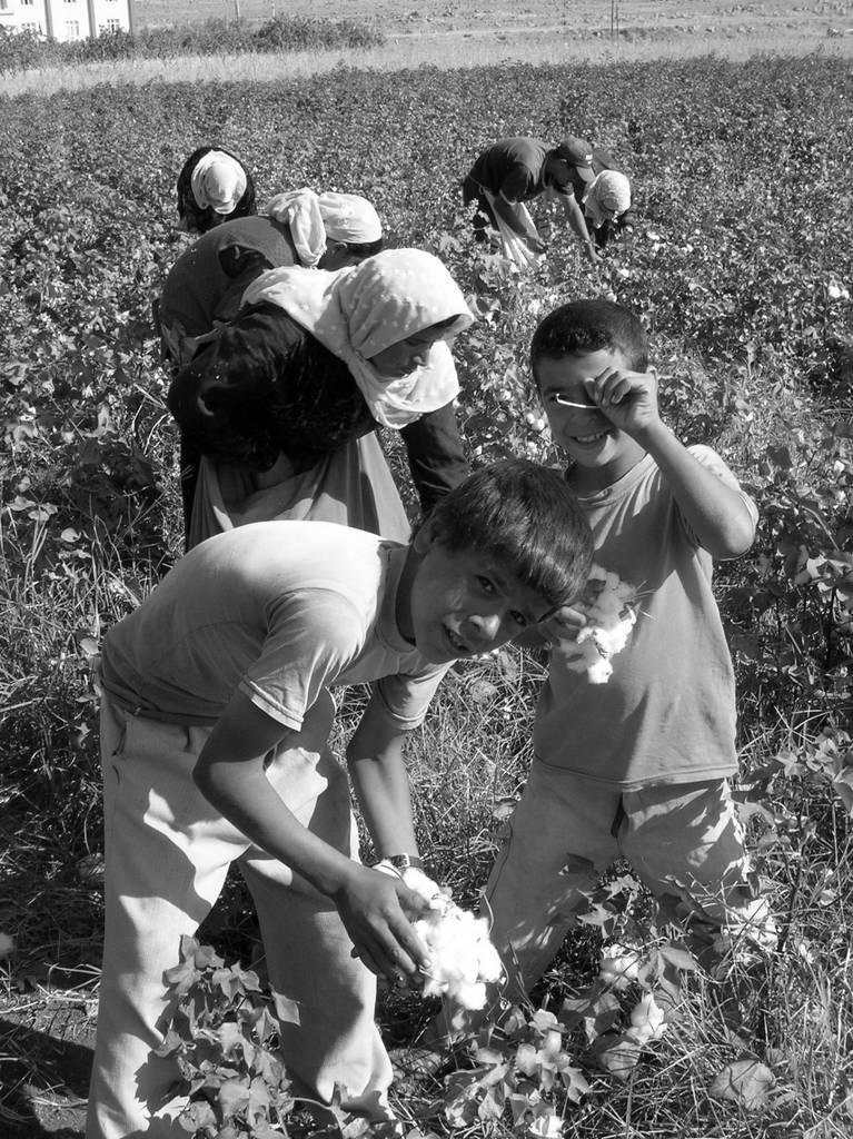 mevsimlik işçiler (5).jpg