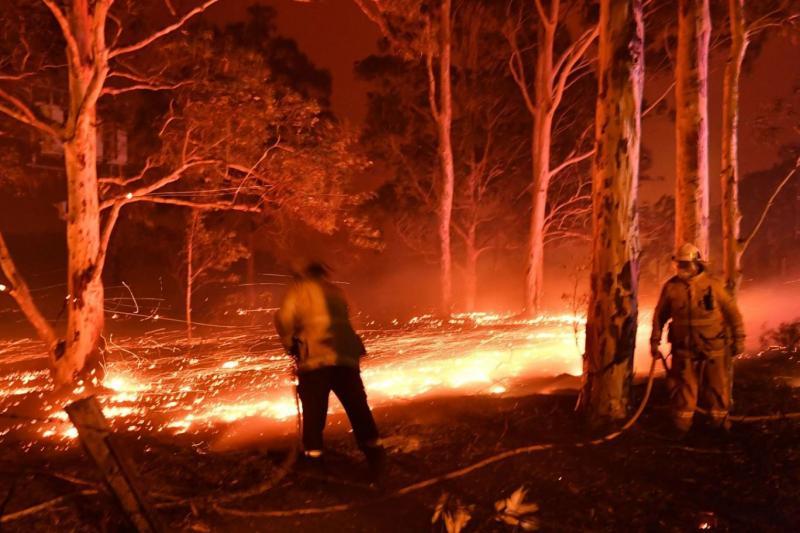 Avustralya yangın AFP.jpg