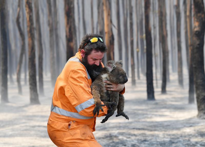 Avustralya yangın Fotoğraf AAP.jpg