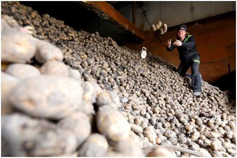 Hollanda Reuters.jpg