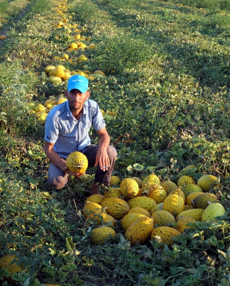 mevsimlik işçiler (8).JPG