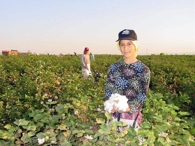 mevsimlik işçiler (10).jpg