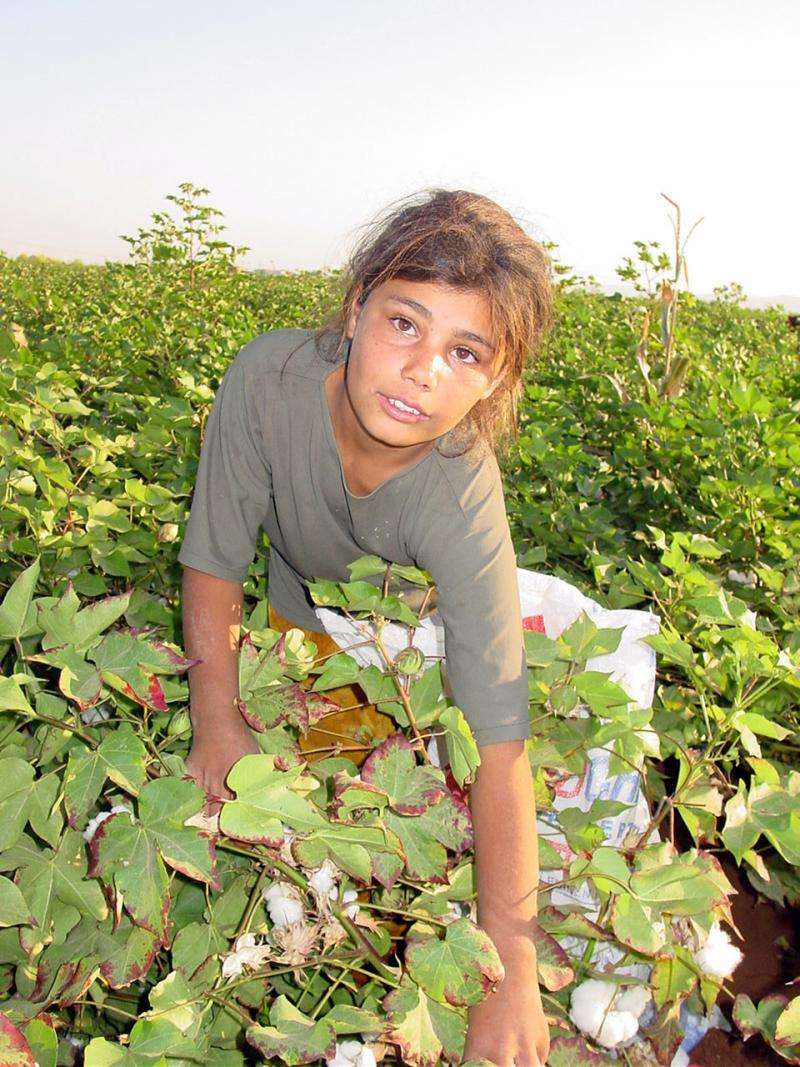 mevsimlik işçiler (11).jpg