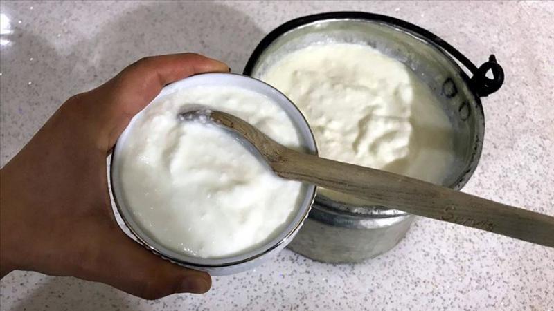 yoğurt aa.jpg