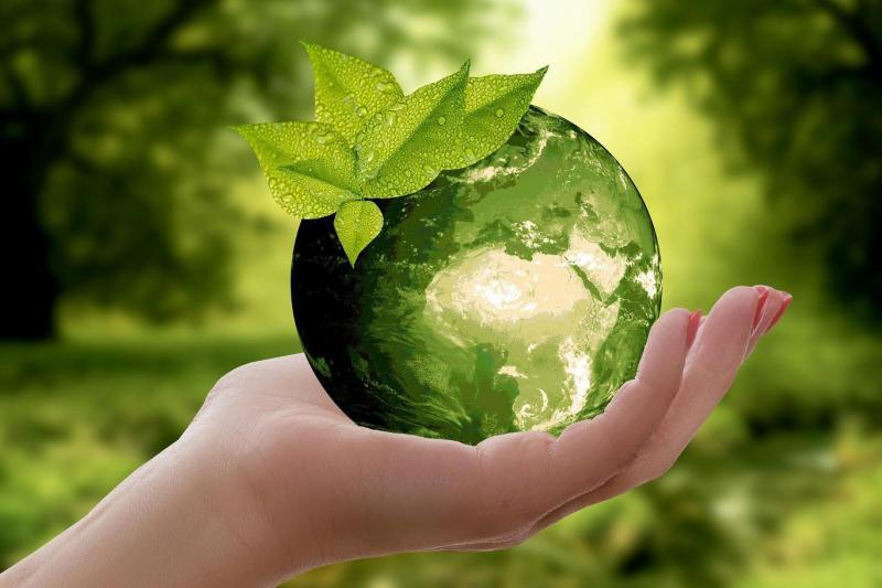 Doğa çevre yeşil dünya elma Pixabay.jpg
