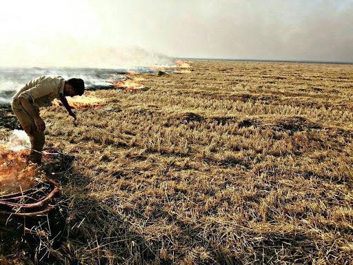 Cafer Telaferi- Ninova da buğday tarlaları ateşe verildi.jpg