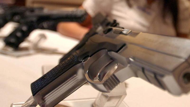 bireysel silahlanma silah AA.jpg
