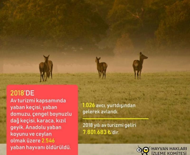 Hayvan Hakları İzleme Komitesi.jpg