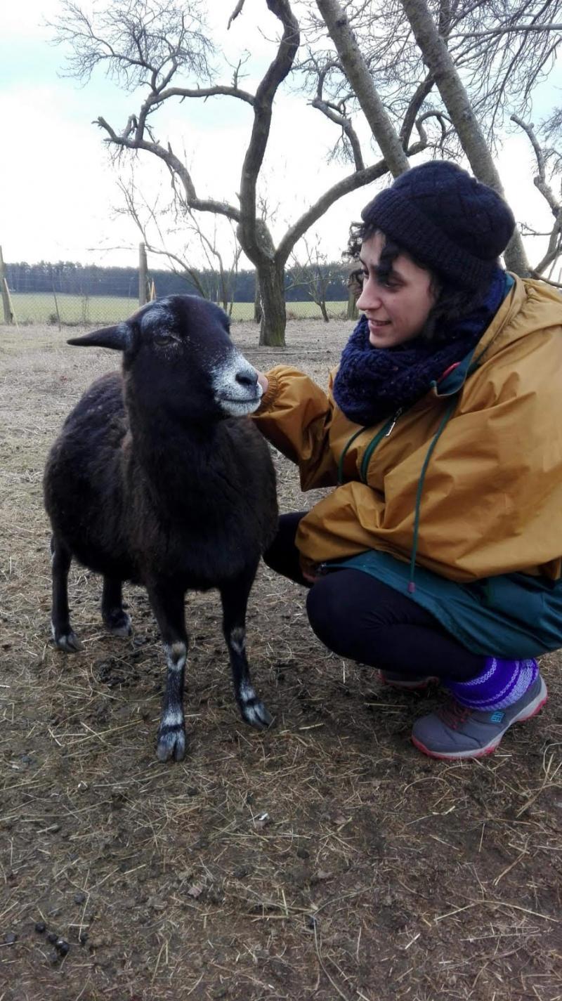 Fatma Bİltekin HAKİM Koordinatörü hayvanlar.jpg