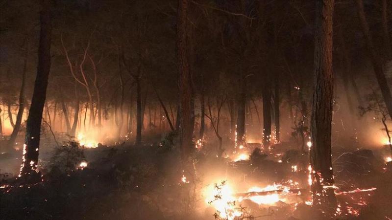 Dalaman orman yangını AA.jpg