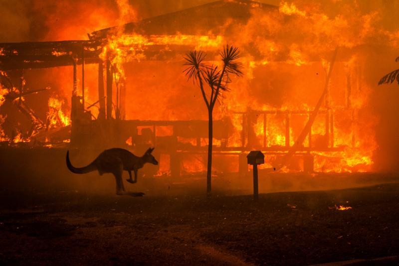 Matthew Abbott, Avustralya, Karanlık Yaz.jpg