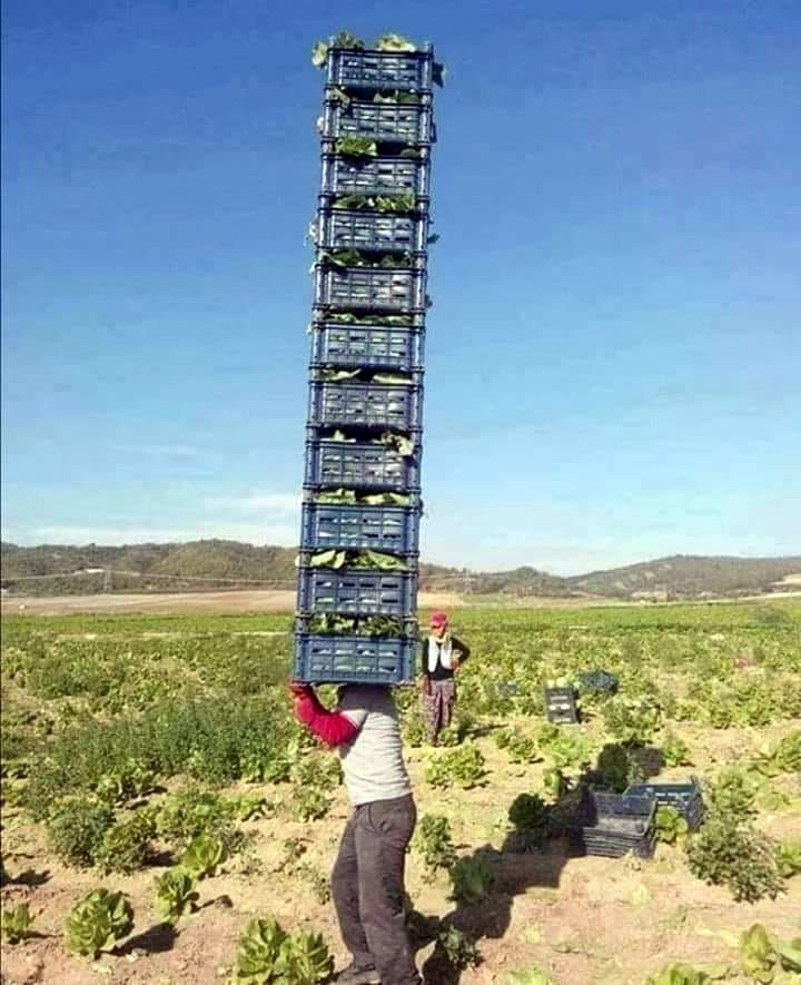 mevsimlik işçi (6).jpg