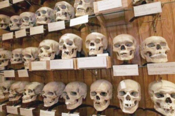 Katliamdan geri kalan kafatasları-kaynak-Mihr haber ajansı.jpg