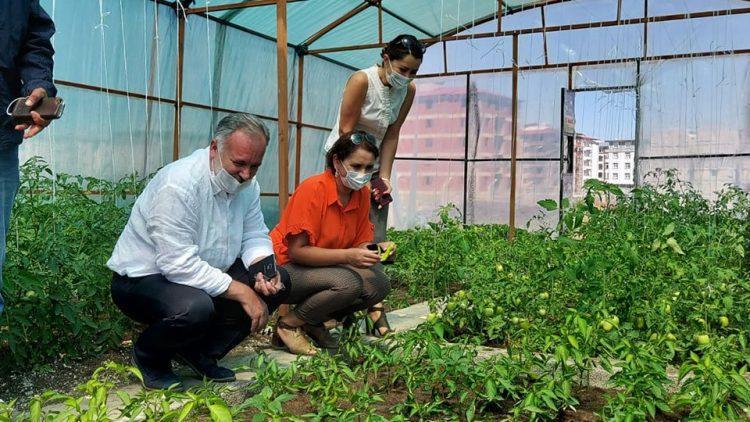 Ayhan Bilgen tarım.jpg