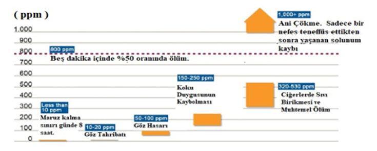 Şekil 2.jpg