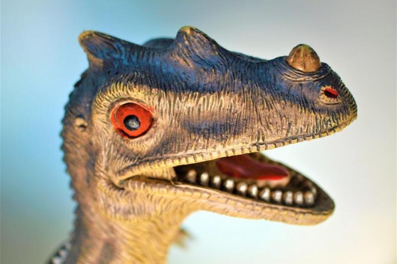 Dünya tarihindeki bir kitlesel yok oluş dinozorlara yaşam şansı tanıdı, bir diğeriyse onları yok etti (Unsplash).jpg