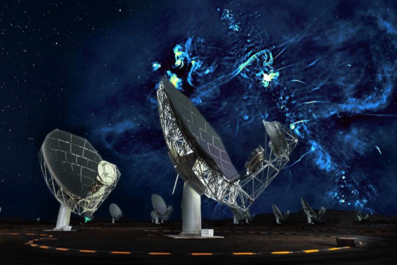 Güney Afrika Radyo Astronomi Gözlemevi (SARAO).png