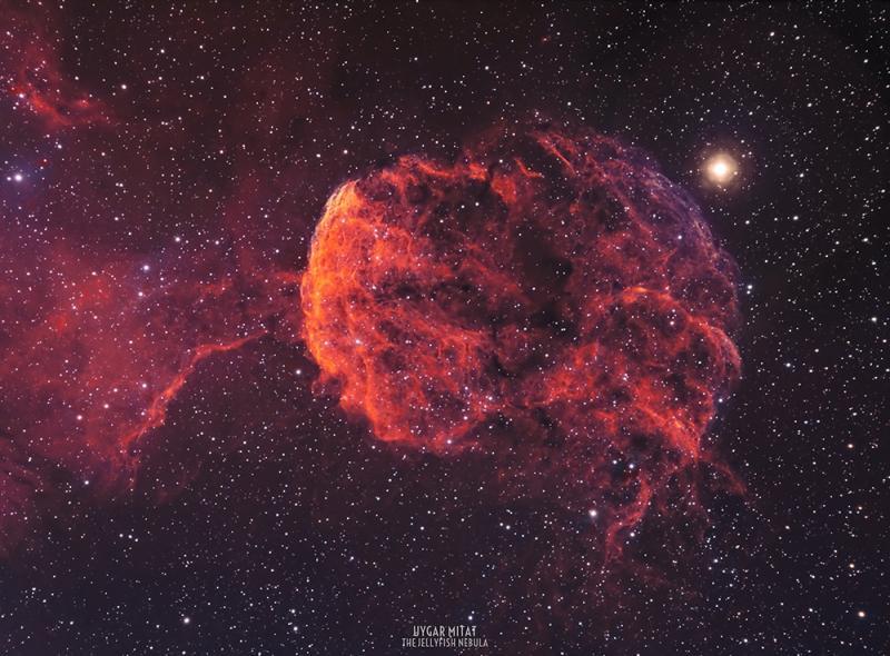 Jellyfish-Nebula.jpg