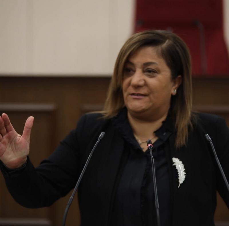 Gülşah Sanver Manavoğlu.jpg