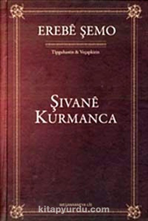 İlk Kürtçe romanın kapağı.jpg