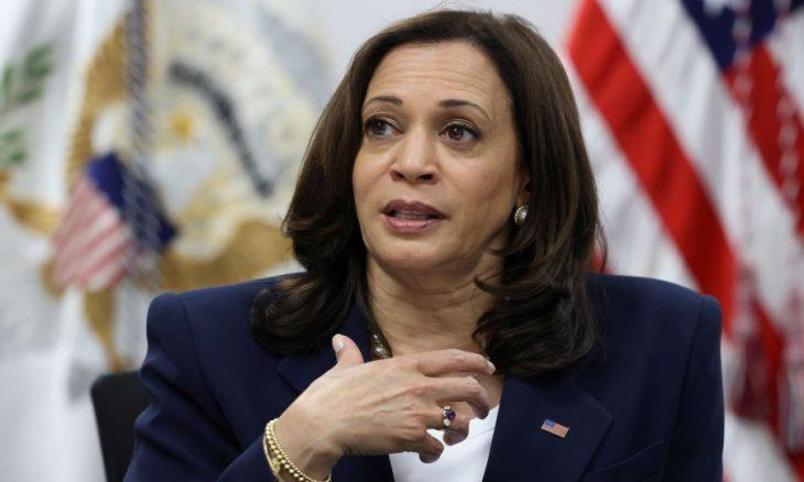 Başkan Yardımcısı Kamala Harris'in Biden'ın yerine geçeceği yolunda varsayımlar var.  .jpg