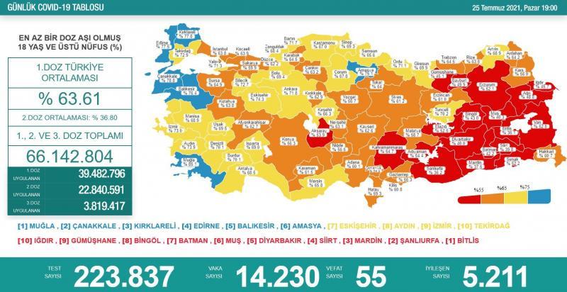 Türkiye Aşı Haritası'nda Diyarbakır Kırmızı Kategoride.jpg
