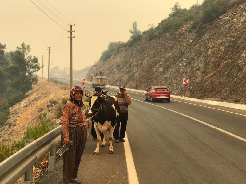 Antalya'nın Gündoğmuş ilçesinde önceki gün çıkan orman yangını Alanya'ya sıçradı. Gündoğmuş'ta bir, Alanya'da iki mahalle tahliye edildi..jpg
