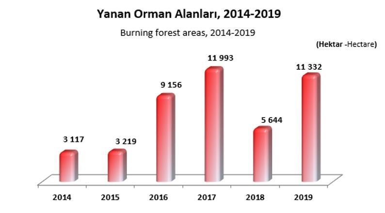 Yanan Orman Alanları- Orman Genel Müdürlüğü 2019 Ormancılık İstatistikleri.jpg
