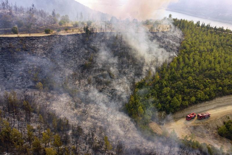 yangın AFP
