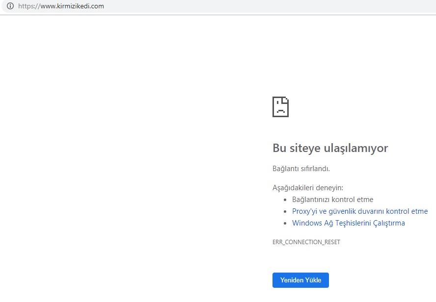 kırmızı kedi internet sayfası ulaşılamıyor.jpg