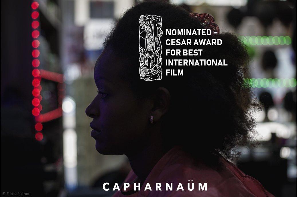 Capernaum5.jpg