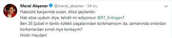 meral akşener erdoğan tehdit yanıt tweet.jpg