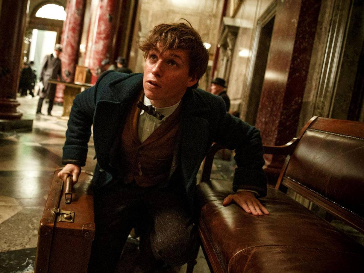 4. Fantastic Beasts and Where to Find Them.jpg