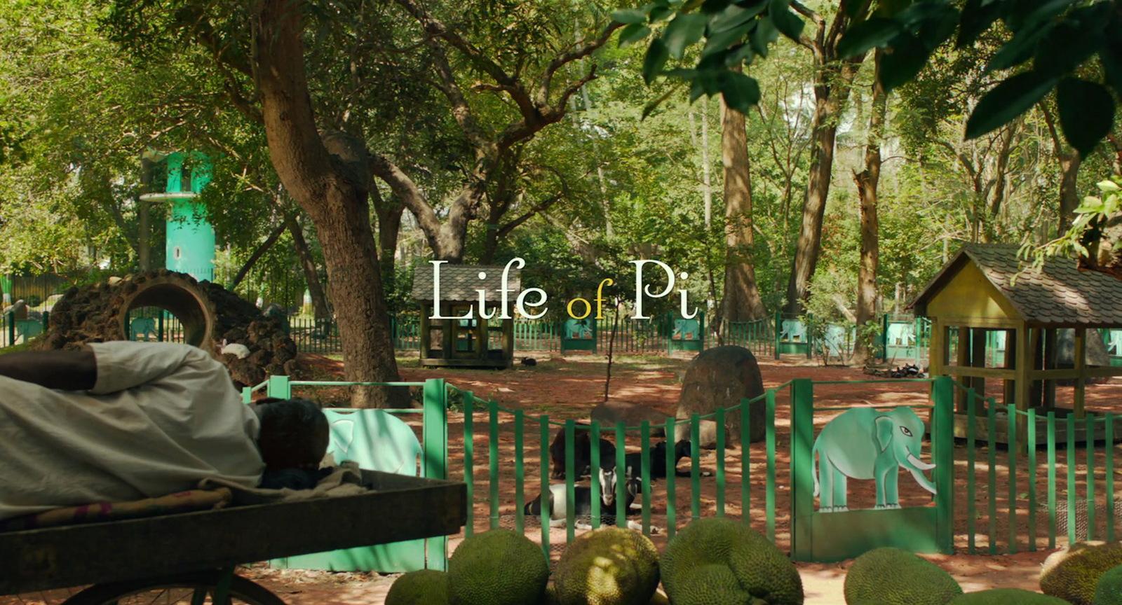 Life of Pi (12).jpg