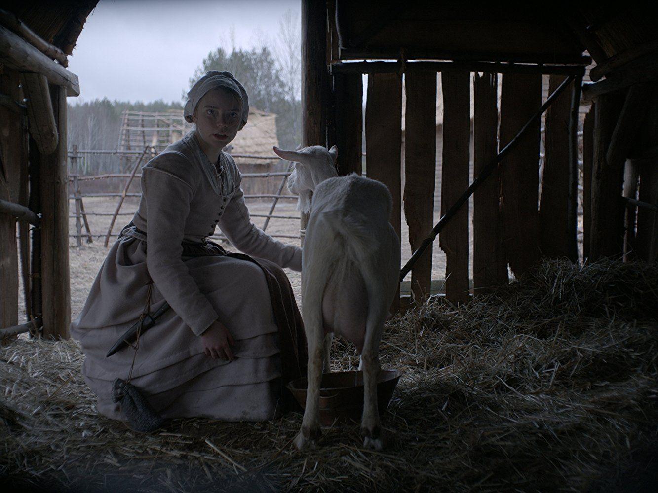 The VVitch, A New-England Folktale 3.jpg