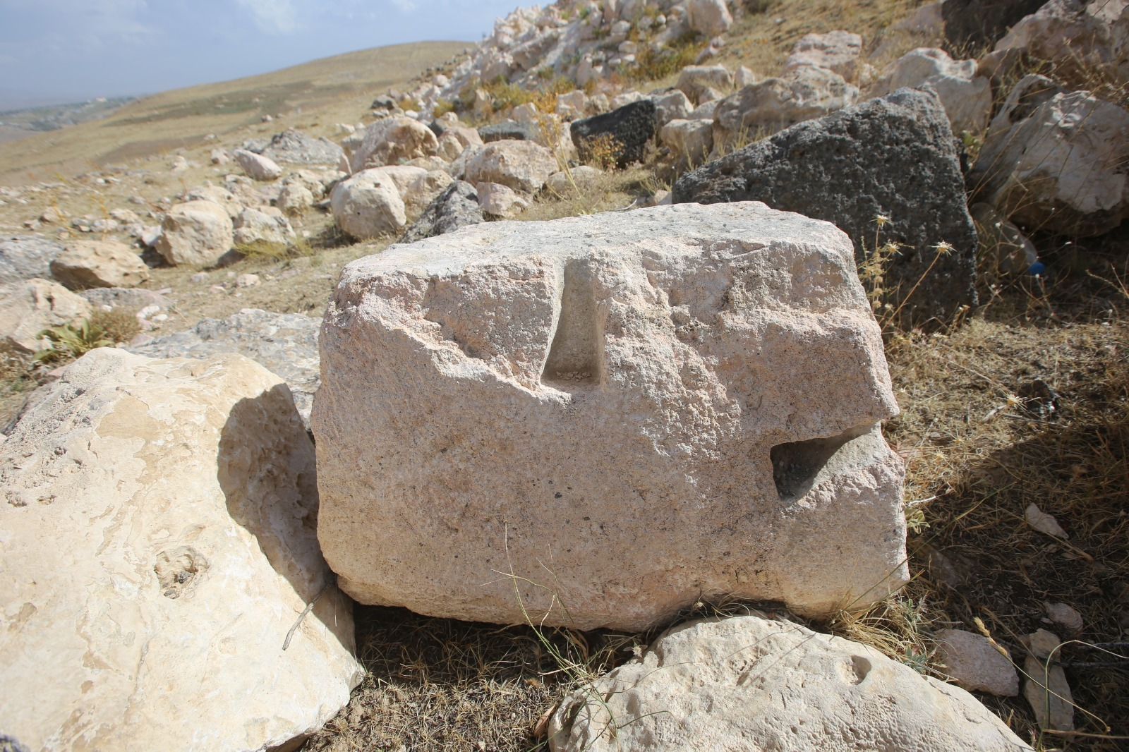 Devasa antik kent, keşfedilmeyi bekliyor (5).jpg